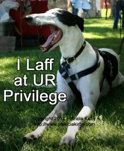 I laff at UR privilege, greyhound