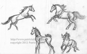 Horse sketches by P. Kirby